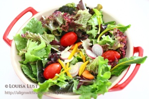 Locally grown organic vegetable salad