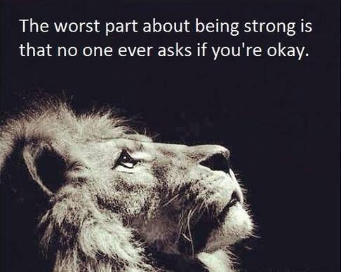 Lion_Strong