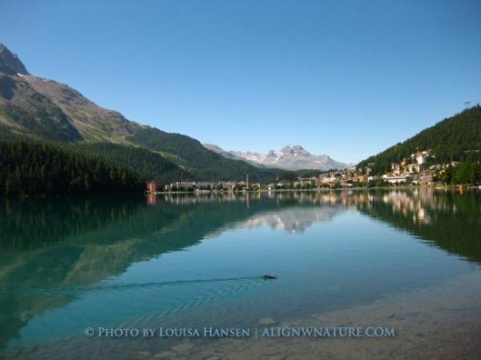 The pristine St. Moritz Lake